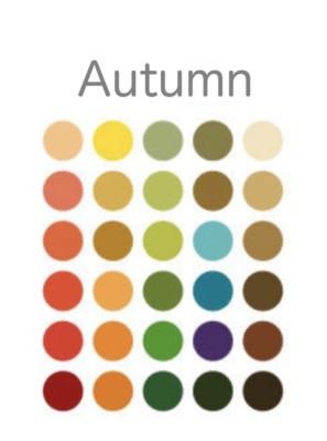 パーソナルカラーオータムのシーズンカラー基本30色